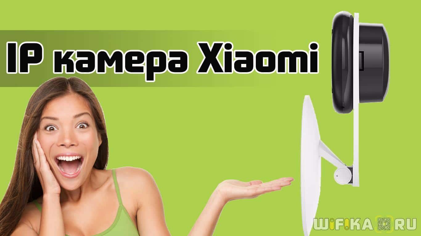 Xiaomi Yi ants