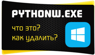 что такое pythonw exe