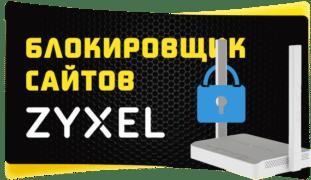 фильтр zyxel