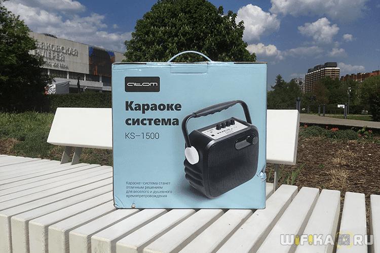караоке система для дома